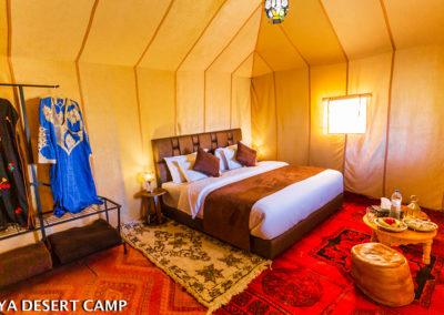 dihya desert camp 22