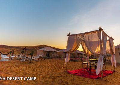 dihya desert camp 27