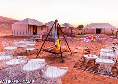 dihya desert camp 28