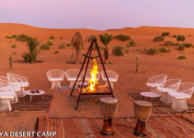 dihya desert camp 29
