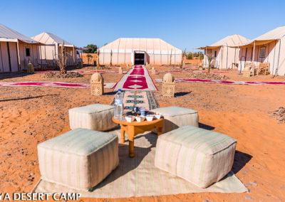 dihya desert camp 31