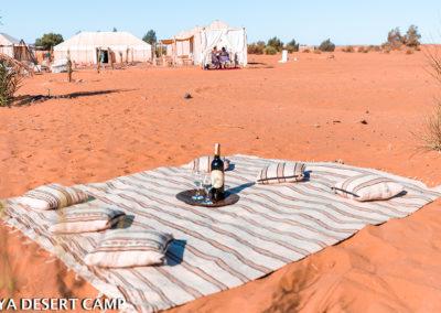 dihya desert camp 32