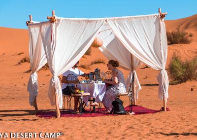 dihya desert camp 35